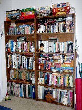 Bookshelves070412